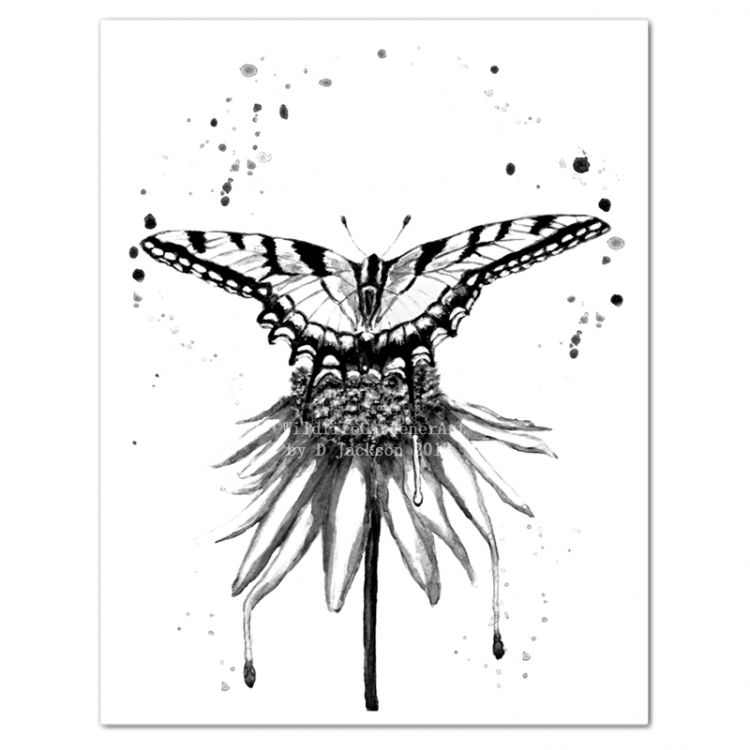 Black And White Butterfly On Flower Monochromatic