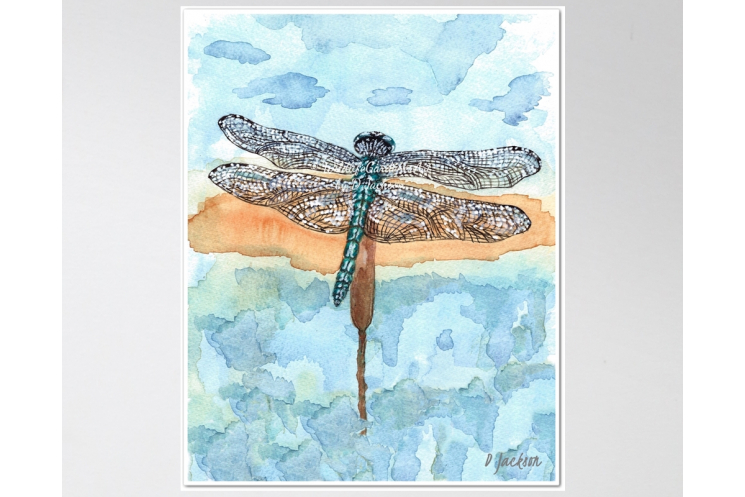 Blue Dragonfly Watercolor Art Print, 11 x 14 Unframed