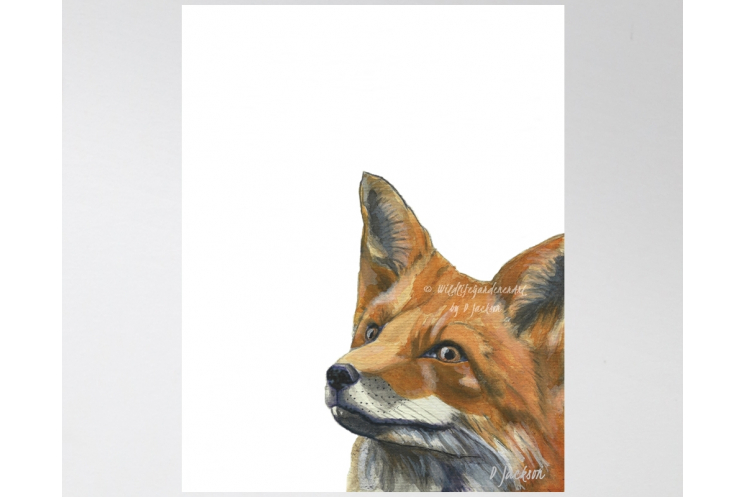 Contemporary Red Fox Watercolor Art Print, 11 x 14 Unframed