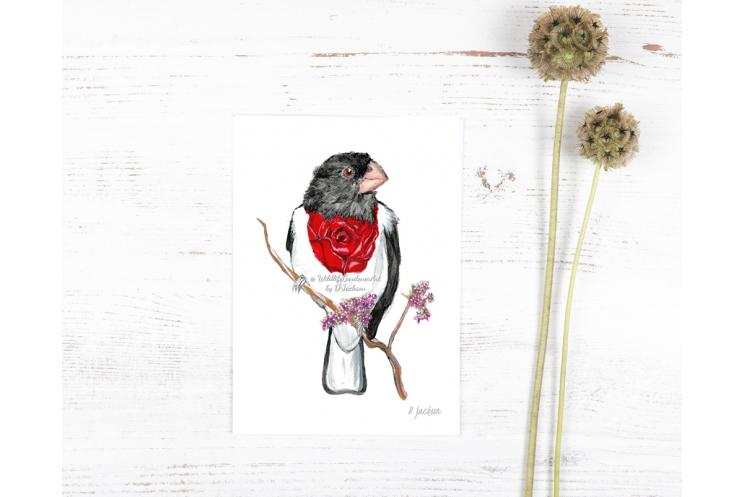 Whimsical Bird Art Watercolor Art Print, Rose Breasted Grosbeak