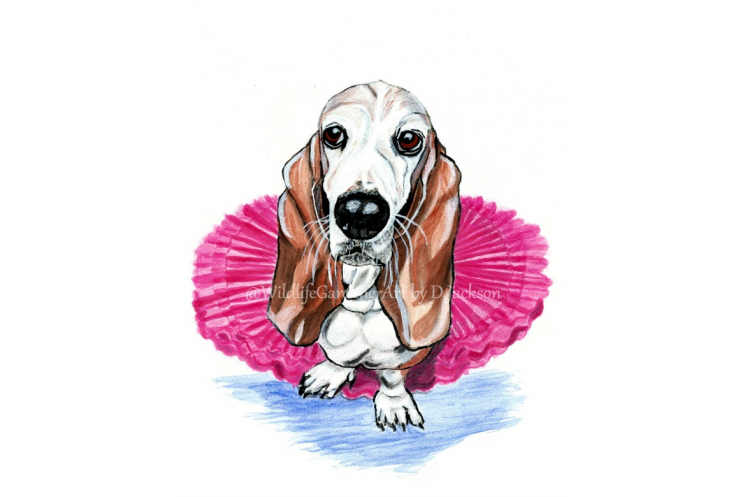 Bassett Hound in pink Tutu, Whimsical Dog Print, Unframed 8 x 10 Pet Portrait