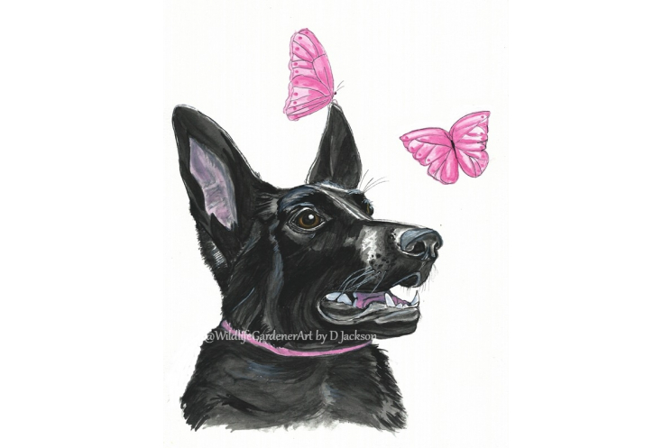 Black dog with pink butterflies watercolor art print, pet portrait