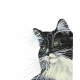 Watercolor Tuxedo Cat art Print, Black and White pet cat, wall decor, gift