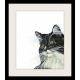 Watercolor tuxedo cat art print, black and white cat art, pet lovers gift