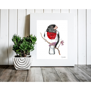 Whimsical Bird Watercolor Art Print, Rose Breasted Grosbeak, 11 x 14, Unframed