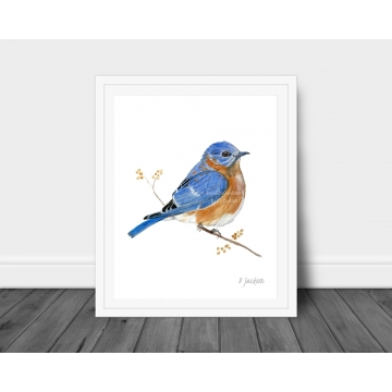Bluebird Watercolor Art Print, 16 x 20, Unframed