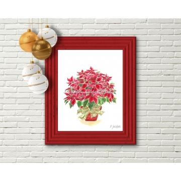 Red Christmas Poinsettia Plant Watercolor Art Print