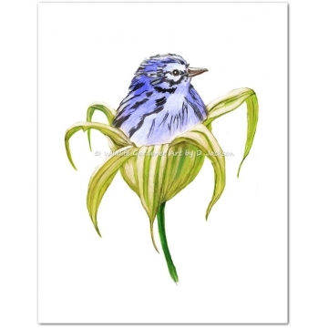 Blue, Pink, Yellow Birds in Lily Flowers Watercolor Art Prints (Set of 3)