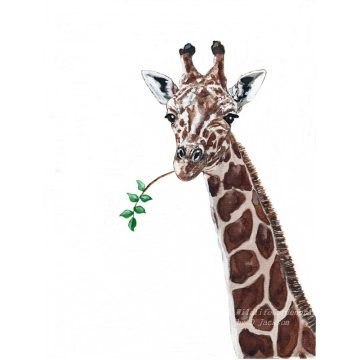 Giraffe Watercolor art print, Safari Animal, African Wildlife Art