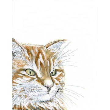 Watercolor Orange Cat Art Print, Pet Portrait, Modern rustic, pet lovers gift