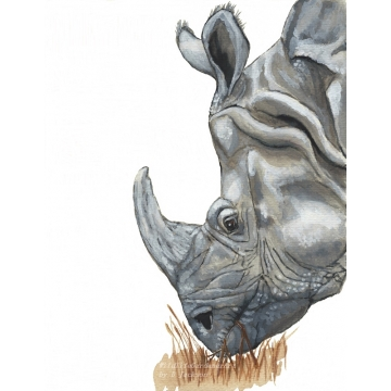 Rhino, watercolor art print, rhinocerus, safari, wildlife kids nursery art