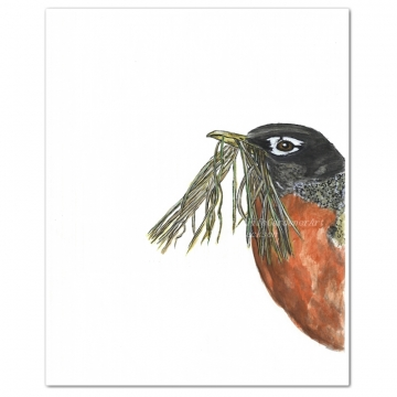 Spring Robin Watercolor Bird Art Print
