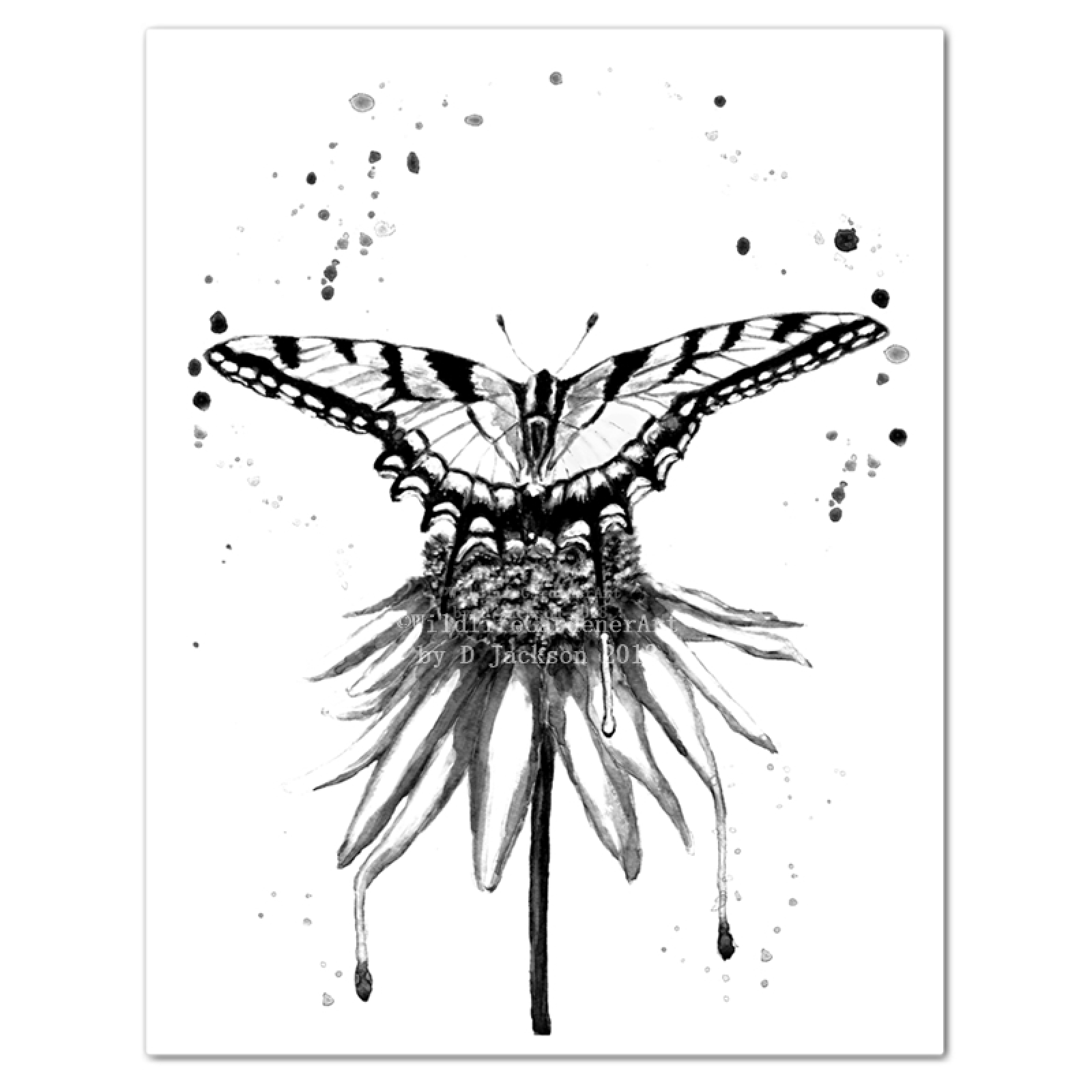 Black and white butterfly on flower monochromatic watercolor art black and white butterfly on flower monochromatic watercolor art print mightylinksfo