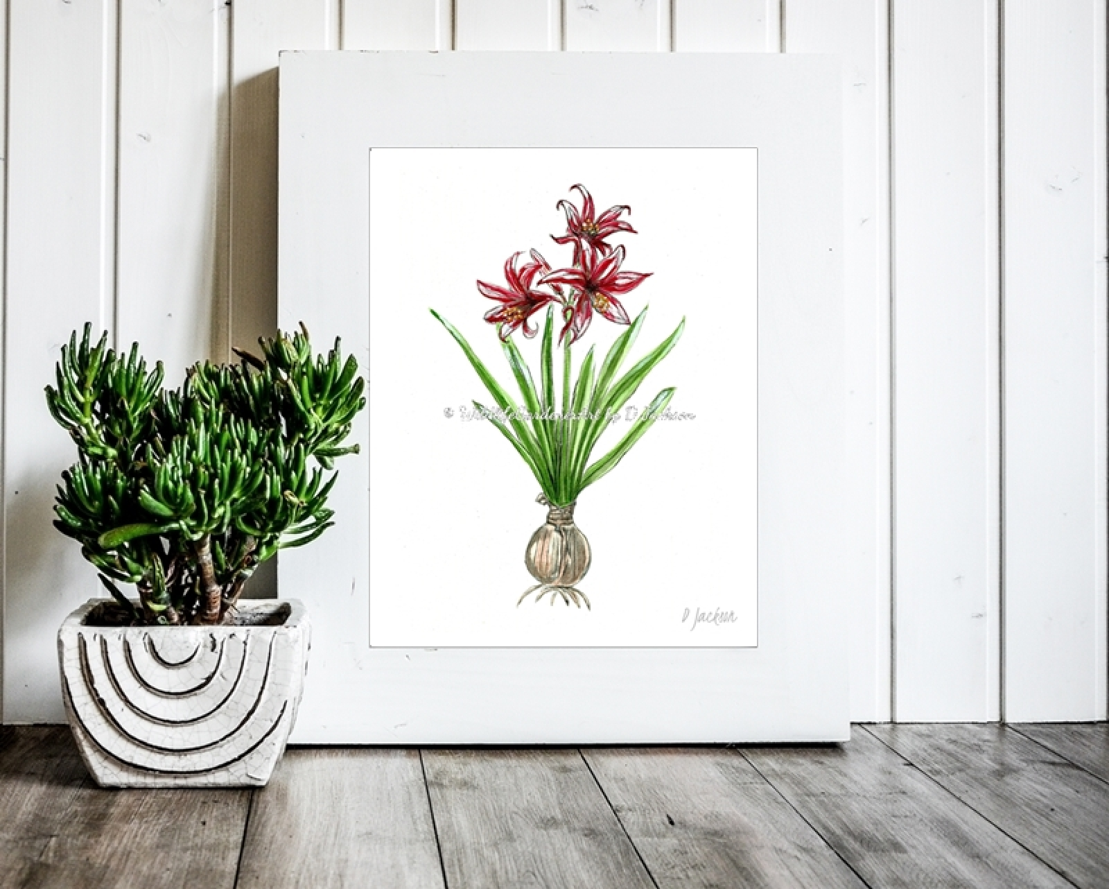 Contemporary Amaryllis Christmas Decor, Watercolor Art Print 11 x 14 | Wildlife Gardener Art