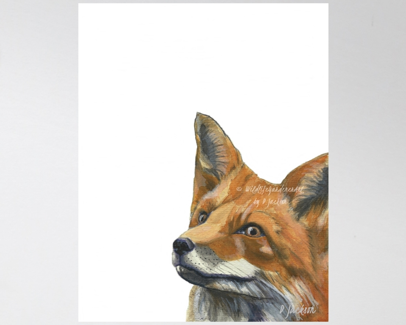 Prancing Red Fox Woodland Watercolor Prints