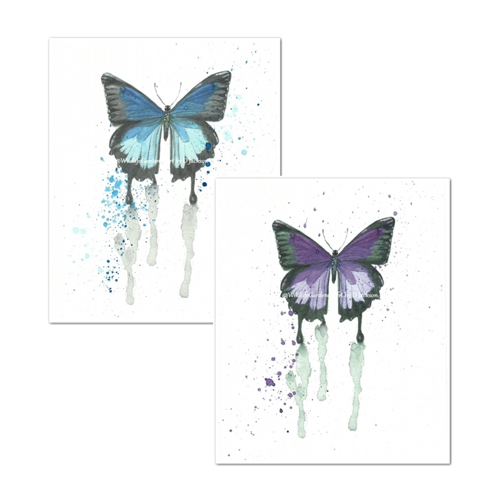 butterfly watercolor art prints pink blue set of 2 wildlife