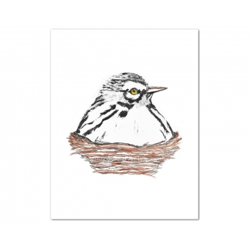 White Warbler Bird in Nest Watercolor Art Print
