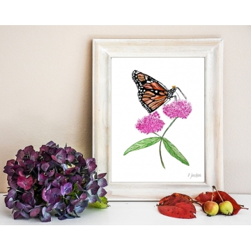 Monarch Butterfly on Milkweed Watercolor Art Print