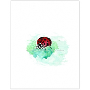 Ladybug Watercolor Art Print, 8 x 10 inch