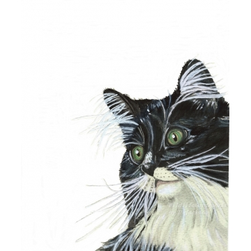 Tuxedo Cat with Green Eyes Watercolor Art Print